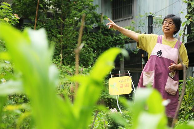 園藝治療 在花草間拾回柔軟心