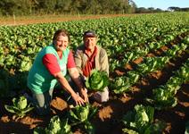 可耕地占比最高, 把農業當高科技發展