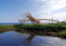 認養海稻米,收藏東海岸的部落故事