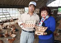 黃建成、江文幼  每顆蛋25元仍供不應求