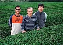 林文經、林和春  1斤40萬還買不到的茶