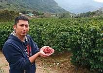 方政倫 讓阿里山咖啡飄香全世界