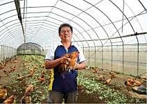 周俊吉 有機天堂 一隻雞賣千元
