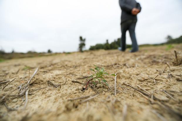 加州祭出史上首道限水令,旱象恐成常態