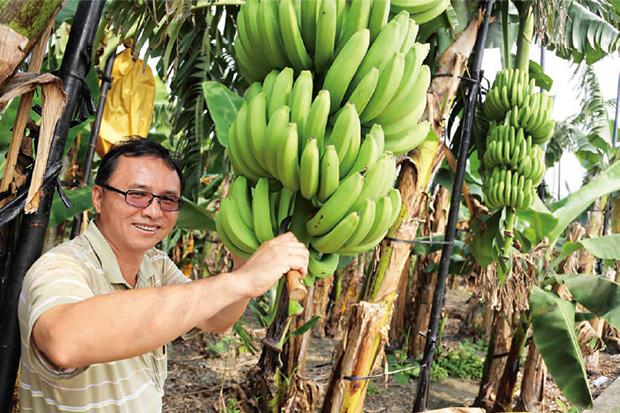 一根香蕉成本4元, 超商為何敢賣23元?