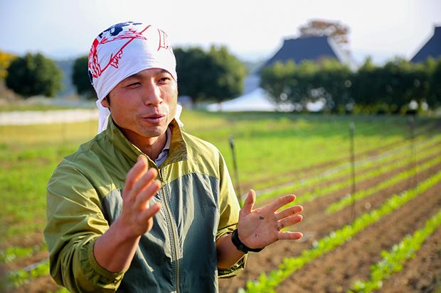 發現土壤的力量,不施肥也種出健康作物