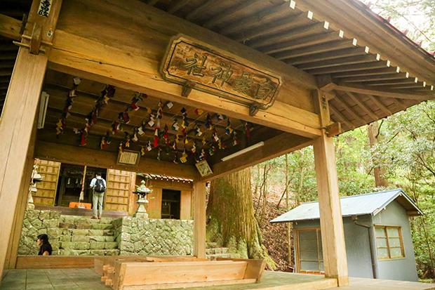 傳統藝能當賣點,一支山葵活化老村莊