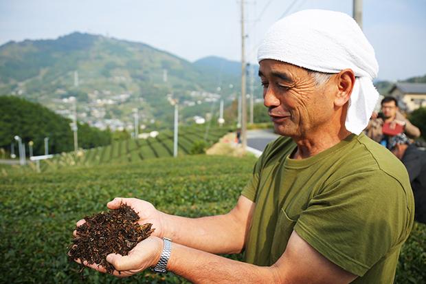 遵循古法種好茶,名列世界農業遺產
