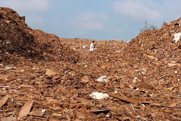 廠房用來裝垃圾 71萬噸汙泥堆成山