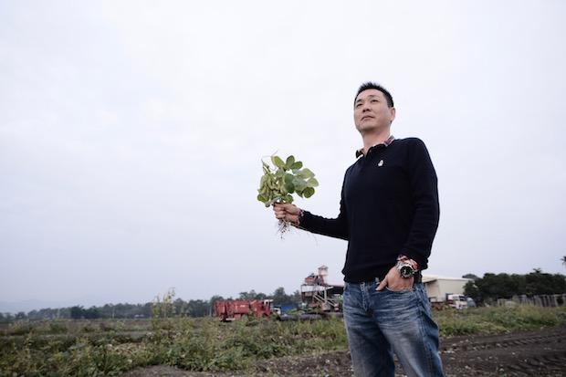 風災大雨播種遲 毛豆產量大減35%