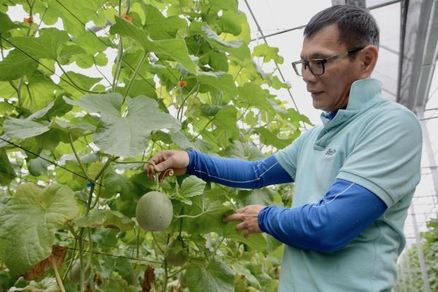 四招救農業 用智慧戰勝天氣