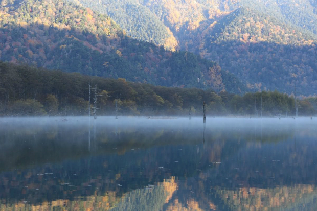 秋遊北陸   上高地清晨的魔幻大正池&神降地明神池