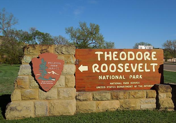 前進羅斯福國家公園,一探水牛和土撥鼠的奇異世界!