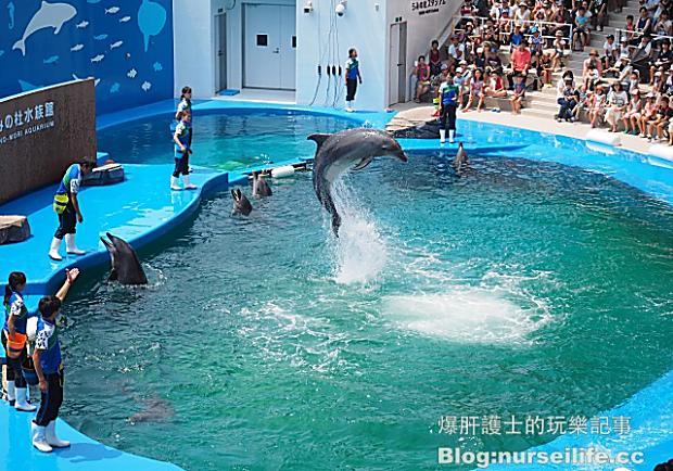 仙台海之杜水族館,造訪日本東北最大規模的水族館!