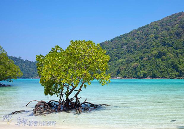 美麗又難忘的體驗!泰國素林國家森林公園的背包之旅