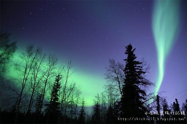 追逐極光之美!冬日阿拉斯加冒險之旅