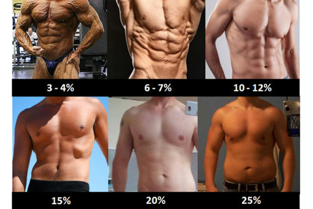 body fat percentage men chart