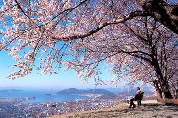 真實版Pantone色不修片!濟州島的天然美景,你怎能錯過?