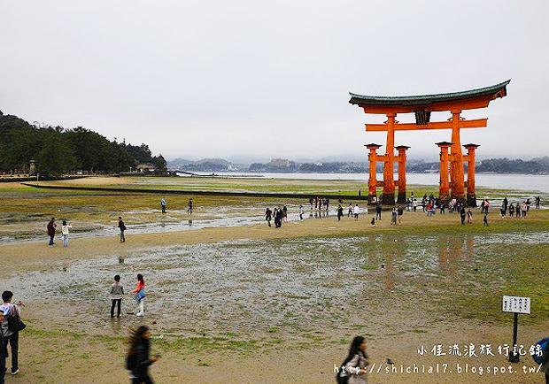 日本必看世界文化遺產!來去朝聖嚴島神社、海中鳥居