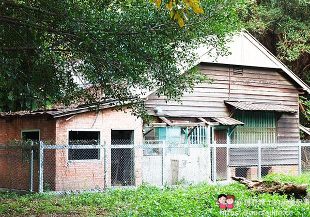 勾起跨時代的懷舊記憶!造訪雲林舊糖廠日式宿舍