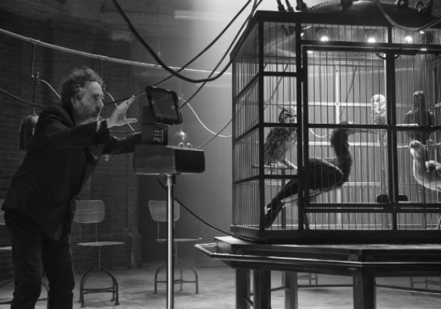 鬼才導演提姆波頓《怪奇孤兒院》,視覺震撼的年度鉅作!