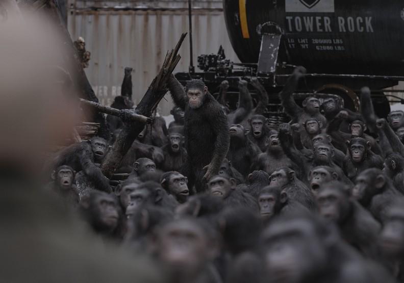 《猩球崛起:終極決戰》:顛覆物種間的深刻省思