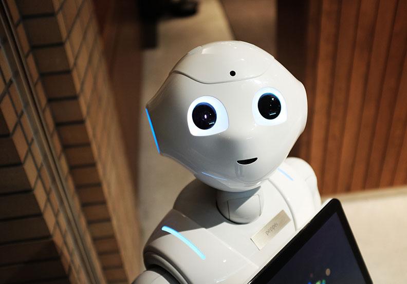 當機器人接管一切