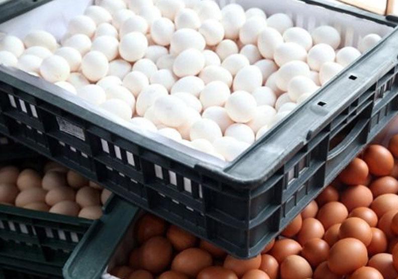 彰化毒雞蛋驗出芬普尼殘留值 是歐盟標準30倍