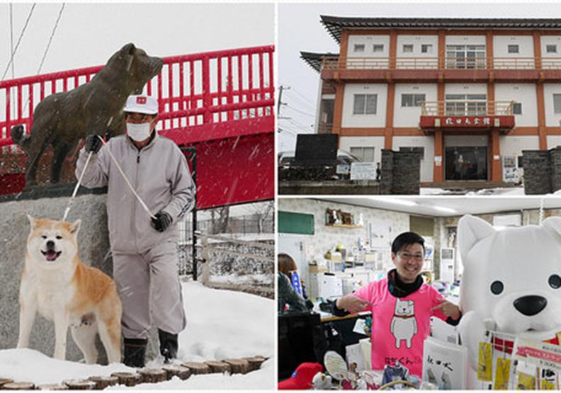 犬派注意!超萌小八會館:秋田犬保存會館