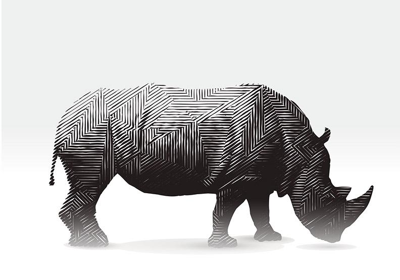孫明德:川普+葉倫=最大的灰犀牛