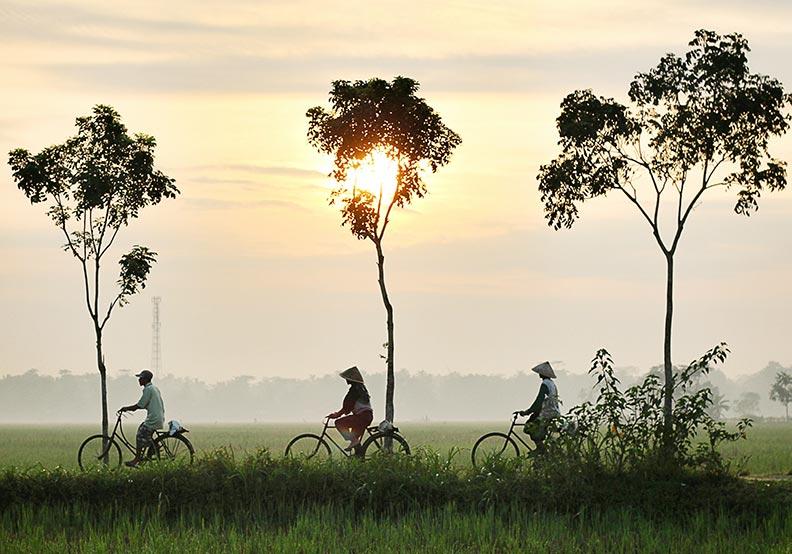 階級、經濟和權力:哪項要素會驅動東南亞未來
