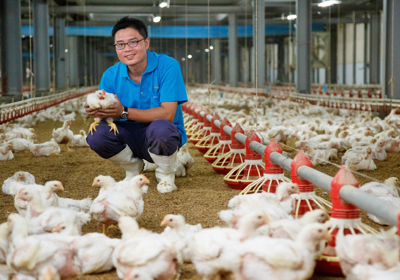 肉雞當精品賣 客讚「高大上」