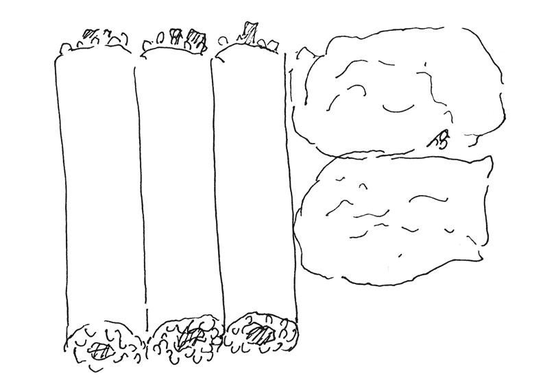 豆皮壽司與海苔卷