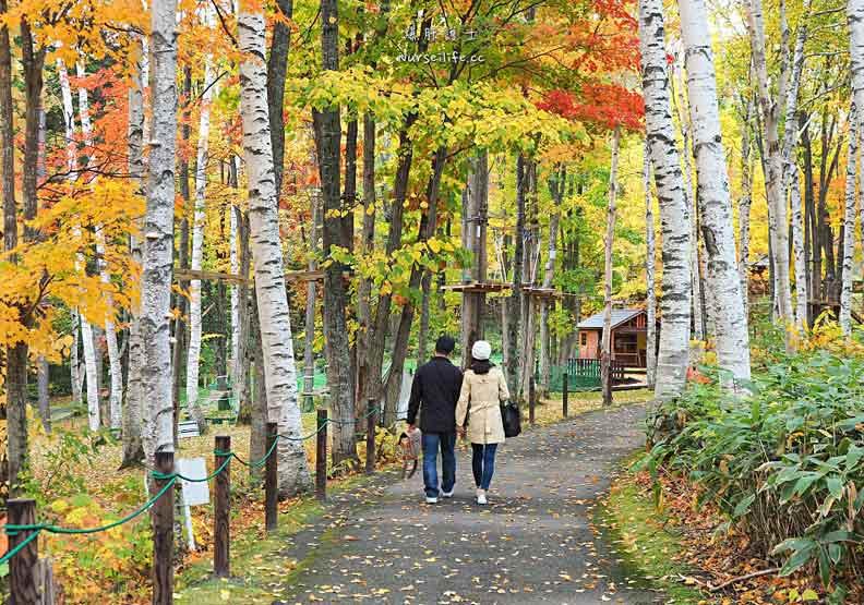 北海道富良野風之花園 森林裡的英式花園