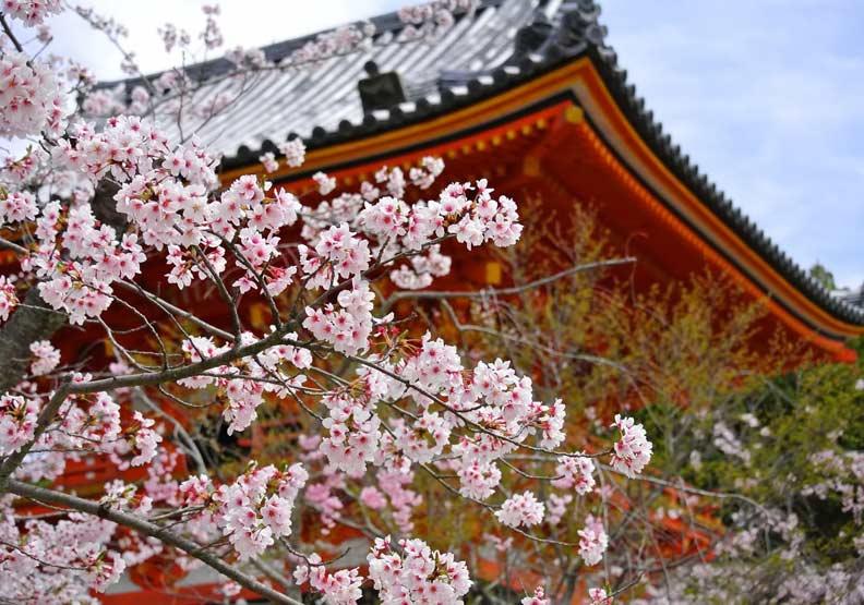 去了不會後悔的京都市集