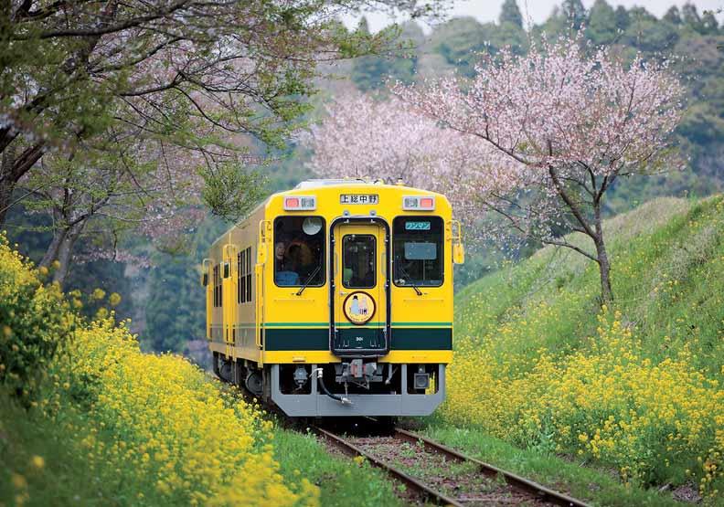 以「什麼都沒有」為賣點的日本夷隅鐵道