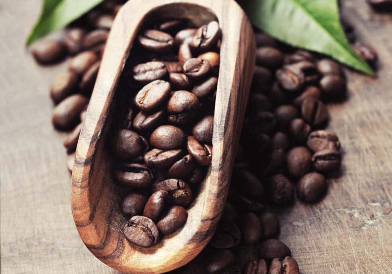 找出適合你的咖啡豆