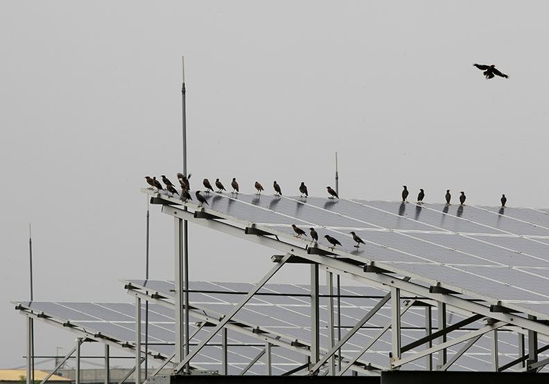 發展再生能源 勿重蹈西班牙覆轍