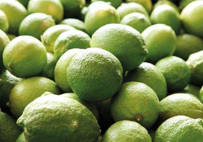 檸檬 酸香味自慢