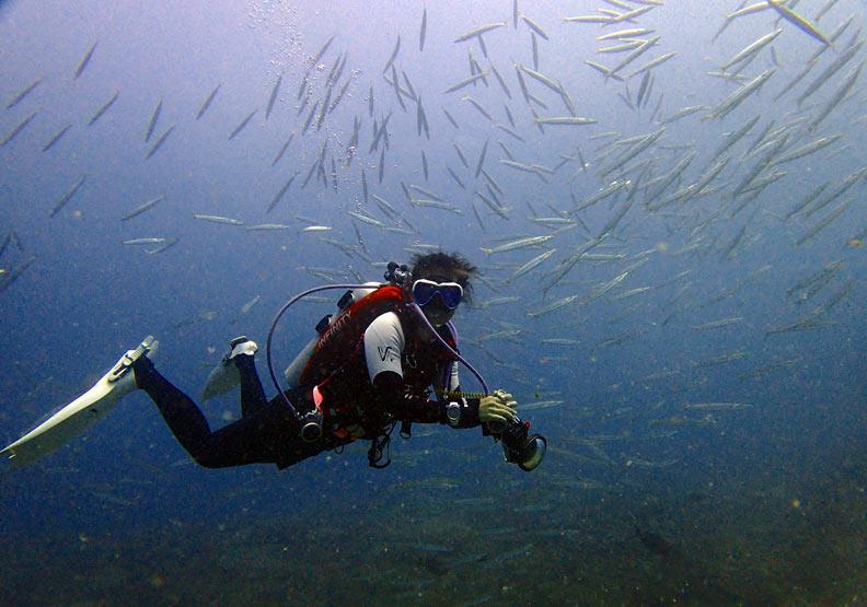 這樣開始就對了!潛水教練養成計畫
