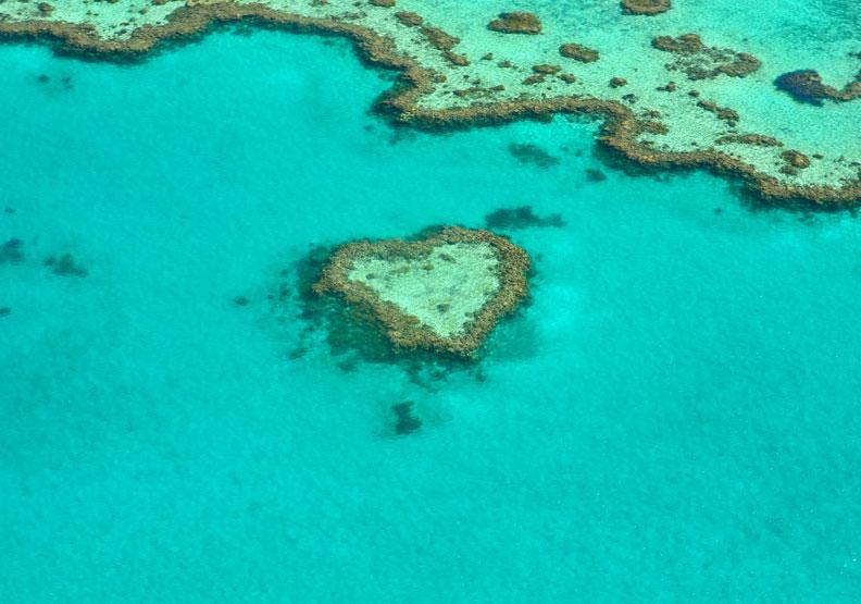 澳洲政府拚觀光 斥資5億澳幣拯救大堡礁