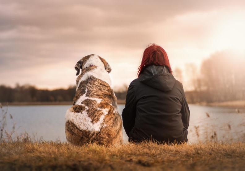 差別待遇 「人不如狗」的談話