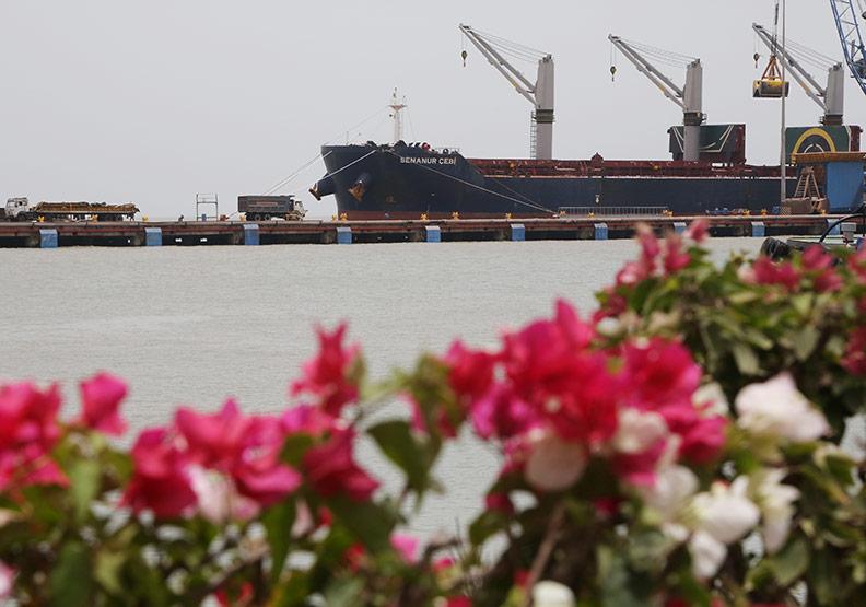 印度港口之王揭祕  阿達尼吃下九成跨國訂單