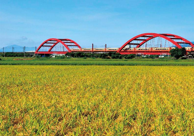台灣農業怎麼了