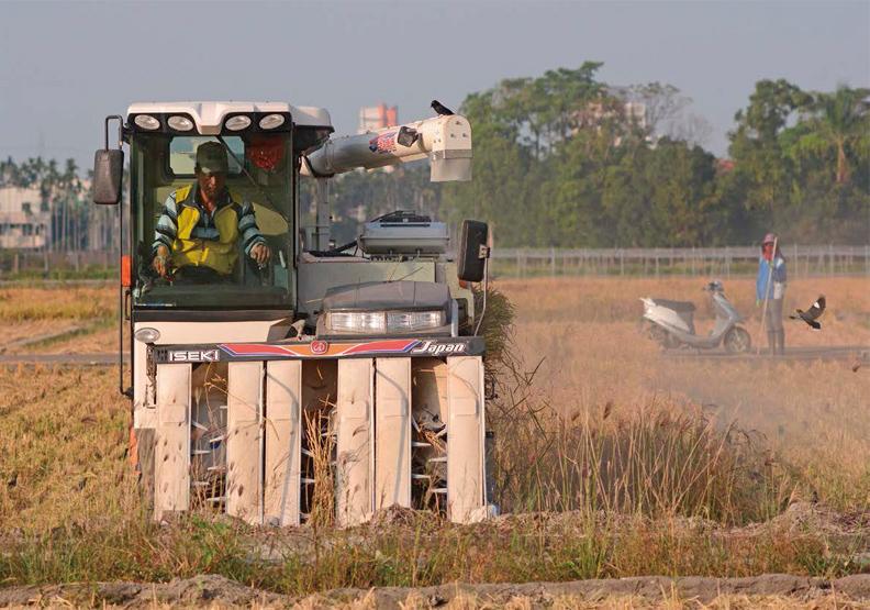 農業與政治的歷史共業