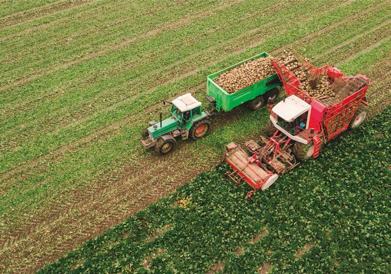 透視荷蘭農業概況