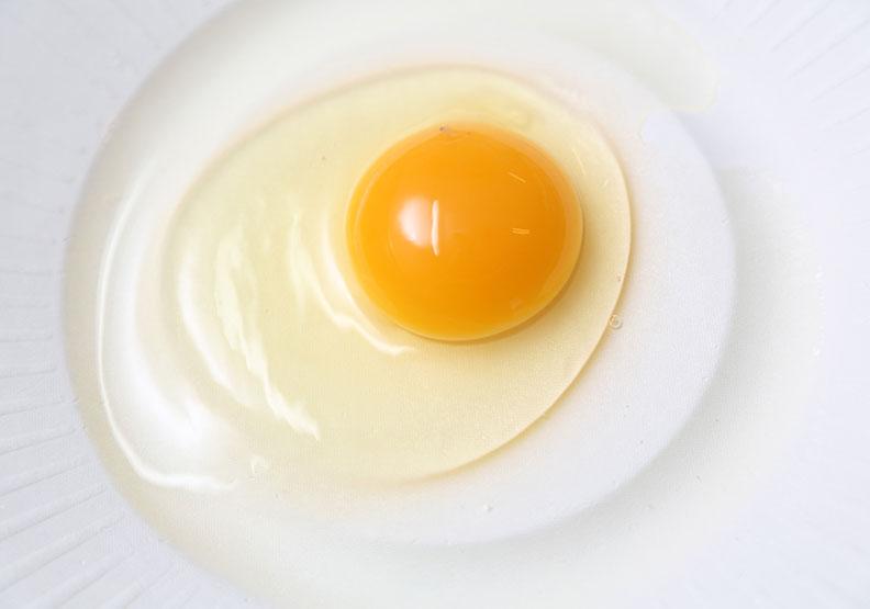 黑心蛋再釀食安恐慌  想吃好蛋先把雞養好
