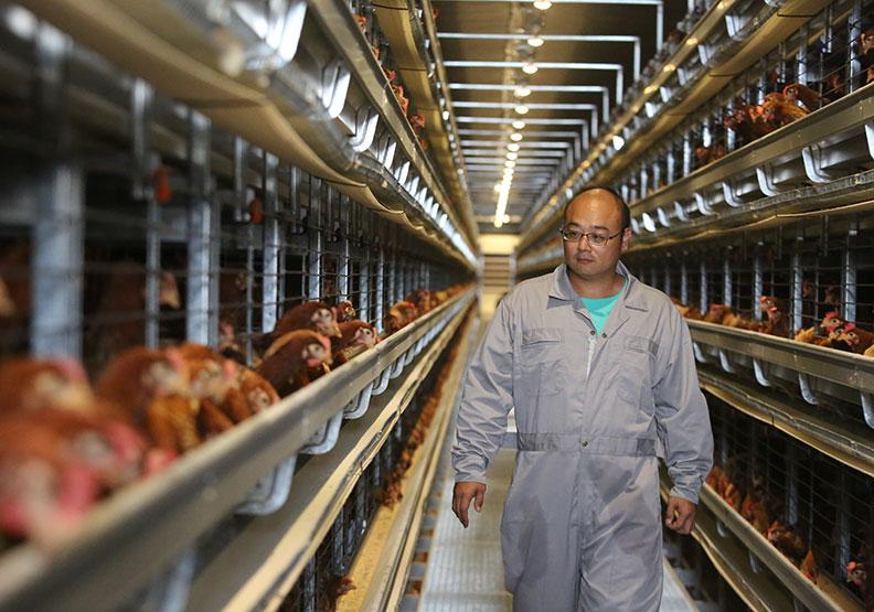 胡明鑫拿身家當資本 砸3億打造蛋雞豪宅