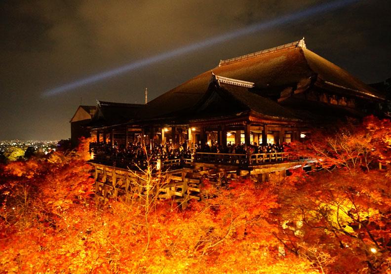 比白天更美!京都賞楓不能錯過的夜楓名所