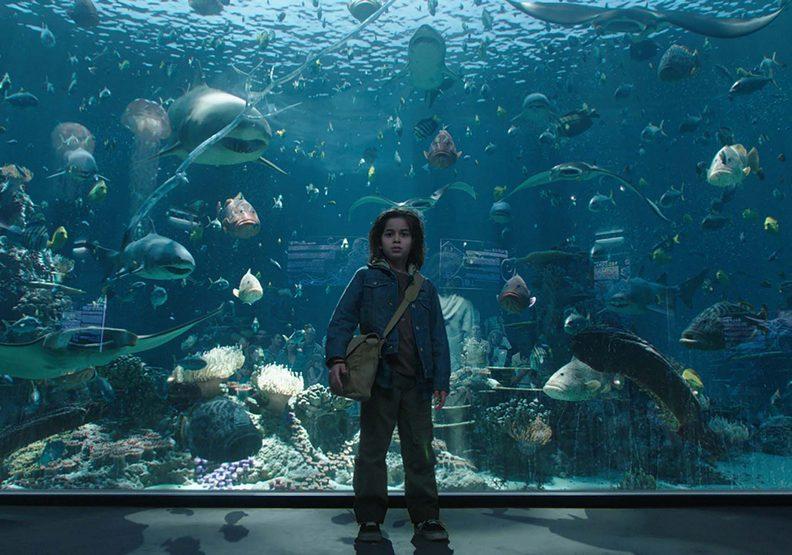 《水行俠》:溫子仁打造全新觀影震撼!讓觀眾彷彿坐在海裡看電影